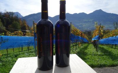 16. Mai 2018 – Steiner Delikatessen: Wein und Grappa