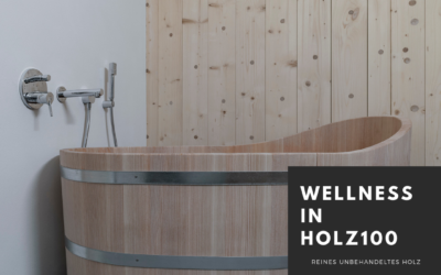 Wellness in Holz100